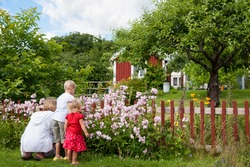 A young mother kneels on the grass with her two young children picking flowers in a beautiful lush rural garden with a house in the distance