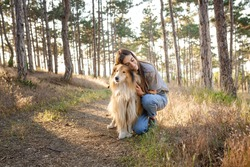 A young woman and an elderly dog walk in the countryside on a summer evening. A lady and her faithful friend from childhood a collie dog
