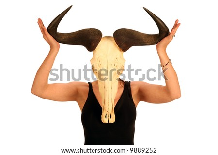 a young woman holds a African Wildebeest skull infront of her head, isolated on white