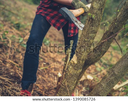 A young woman is cutting down a tree with an axe #1390085726