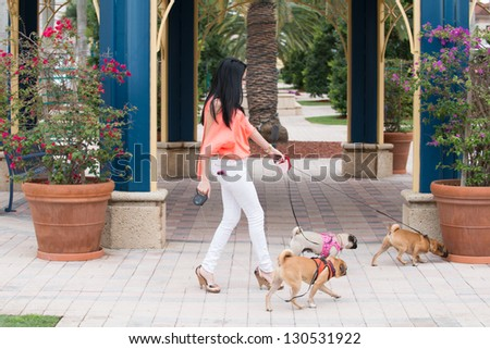 A young woman walking three dogs of pug breed.  A young woman walking three dogs of pug breed.