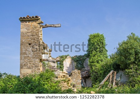 Abandoned and fallen houses idyllically overgrown with plants characterize the idyllic landscape #1252282378