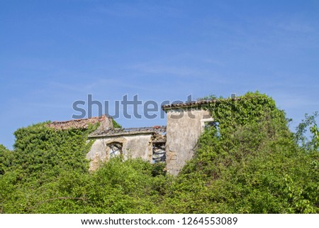 Abandoned and fallen houses idyllically overgrown with plants characterize the idyllic landscape #1264553089