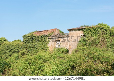 Abandoned and fallen houses idyllically overgrown with plants characterize the idyllic landscape #1267144981