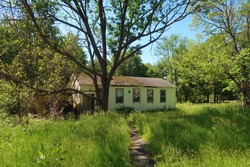 Abandoned and neglected property with overgrown grass. Summer season.
