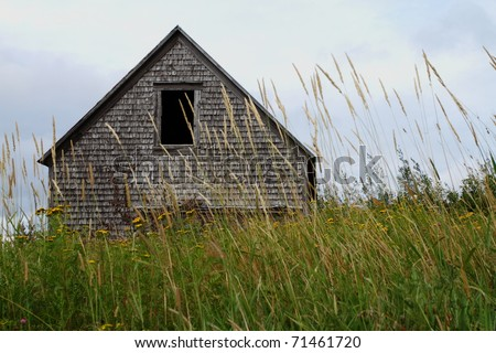 Abandoned barn in tall grass field