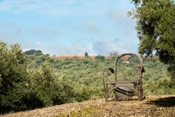 Abandoned broken wicker chair in the field overlooking the olive grove