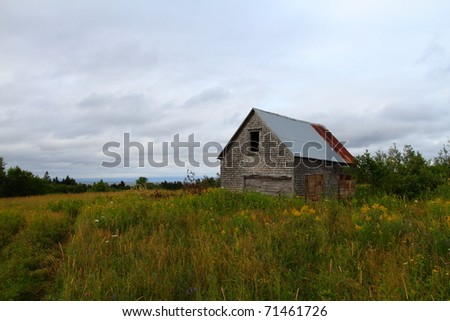 Abandoned building in a summer meadow