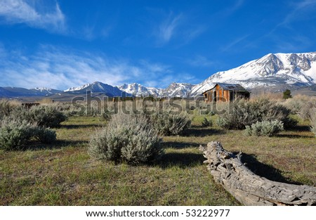 Abandoned cabin near June & Mono Lakes California.
