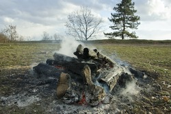 Abandoned campfire on the field.