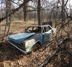 Abandoned car in river bottom woods