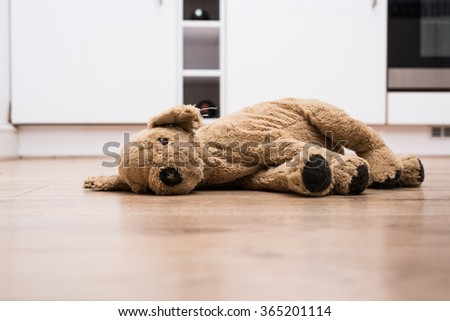 Abandoned Dog Teddy