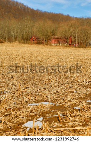 Abandoned farm in winter with red barns and corn stubble field near Allamuchy, NJ