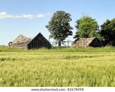 abandoned farmstead buildings