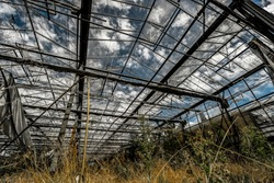 Abandoned greenhouse with glas roof. the factory is very old and closed. nothing was produced here for a long time . no flowers and croop is visible. plants are already growing through the soil