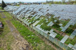 Abandoned greenhouses damaged and destroyed by the hail