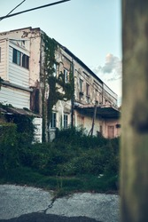 Abandoned gritty grungy white building with chipped paint and green overgrown grass and vines in alleyway in Blytheville, Arkansas.