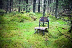 Abandoned, lost forest place with very old and damaged chair for relaxing and green mosh. Autumn spooky empty forest. Loneliness and emptiness concept.