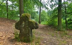 Abandoned medieval conciliation cross, Czech Republic