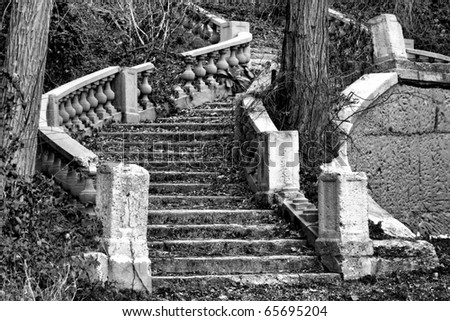 Abandoned monumental staircase ruin in an ornamental mansion garden overrun by vegetation and trees