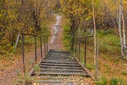 Abandoned old autumn park. Rusty broken metal ladder. Go down the stairs to the path leading into the forest.