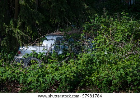 Abandoned old car overgrown by blackberry bushes - stock photo