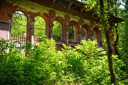 Abandoned ruins of an old building in the forest overgrown with trees and bushes