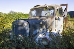 Abandoned rusty overgrown truck outdoor in a meadow in Europe
