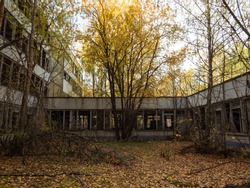 Abandoned school building, taken by the nature and decaying. Chernobyl Exclusion Zone. Ukraine