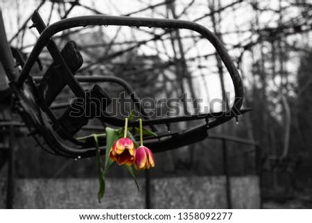 Abandoned swing in amusement park in pripyat, chernobyl area #1358092277