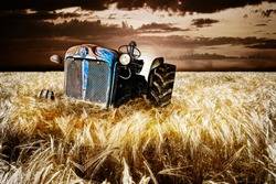 Abandoned tractor in cornfield