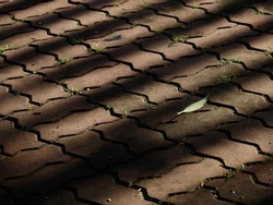 abandoned walkway texture with shadow and sunlight in the garden