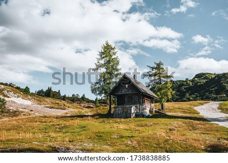 Abandoned wooden house in mountains, hiking trail. Sunny day on Vogel mountain in Slovenia. Stockfoto ©
