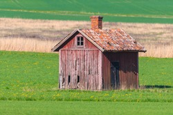 Abandoned wooden storage barn in red worn colors in a green cropfield with forest in the background. Summer and colorful
