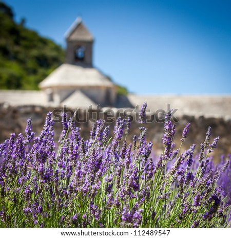 Abbaye Notre-Dame de Senanque with blooming lavender field, Vaucluse, Provence, France
