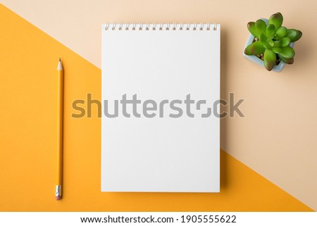 Above overhead close up flatlay view photo of clear spiral textbook with drawing pencil and succulent plant isolated half yellow and beige desk