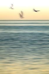 Abstract art blur photo sea landscape yellow sky blue waves