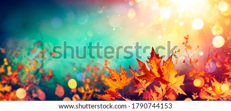 Abstract Autumn With Red Leaves On Blurred Background - Lush Lava and Aqua Menthe Colors Trend   Stock photo ©