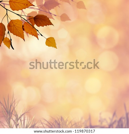 Abstract autumnal backgrounds with beauty bokeh for your design