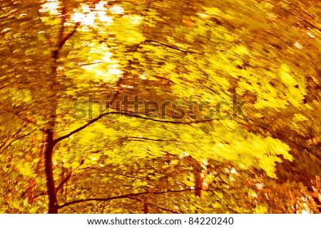 Abstract background. Autumn Trees. Autumn background. Motion blur.