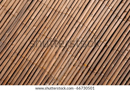 Abstract background - bamboo wall texture - stock photo