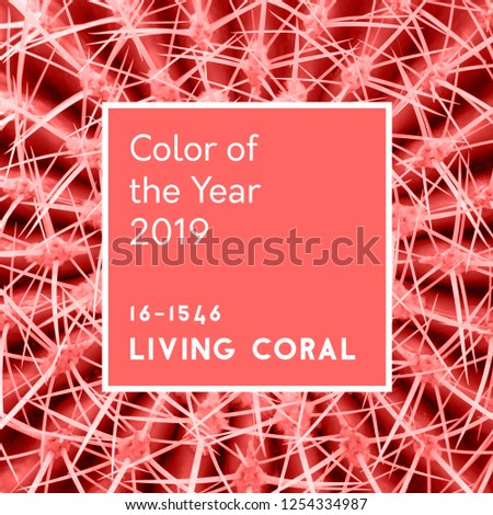 Abstract background. Cactus spines in trendy Living Coral pastel color. Inscription color of the Year 2019   #1254334987