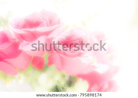 Abstract background for love and romantic concept with soft focus of pink fabric roses