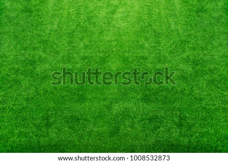Abstract background from green grass field.  Fresh natural decoration on floor in garden. Picture for add text message. Backdrop for design art work.