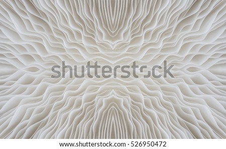 abstract background macro image of Sajor-caju Mushroom #526950472