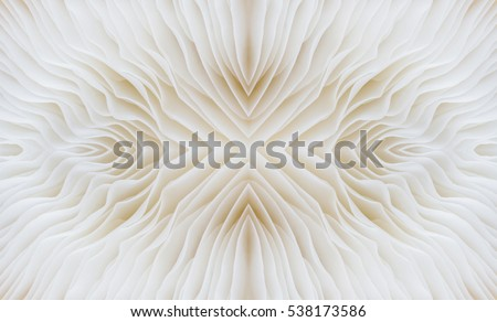 abstract background macro image of Sajor-caju Mushroom #538173586