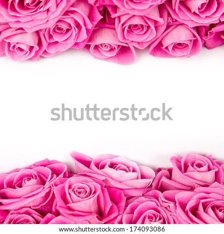 Abstract background made of rose blooms with white space for text