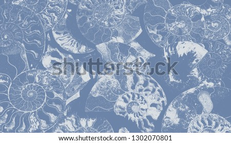 Abstract background of fossil Ammonites, Ammonoidea. Decorative wallpaper of petrified shells. Print from white textured spirals of seashells on blue backdrop. Stamps of Cephalopoda mollusks.