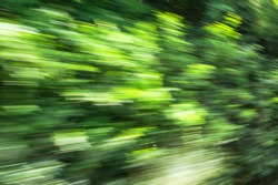 Abstract background of high speed motion blurred of trees outside the train. Picture was blurred in purpose