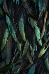 Abstract background of rooster feathers, metallic colors